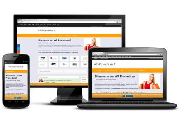 WP Promotions: faites le plein de bonnes affaires WordPress