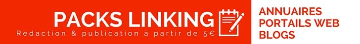 Packs linking, rédaction & publication, pour le référencement de vos sites.